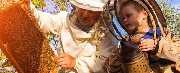 Child beekeeper helping adult beekeeper