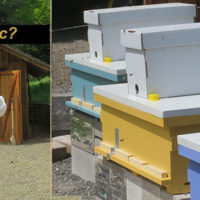 Beginning Beekeeper installs three nucs